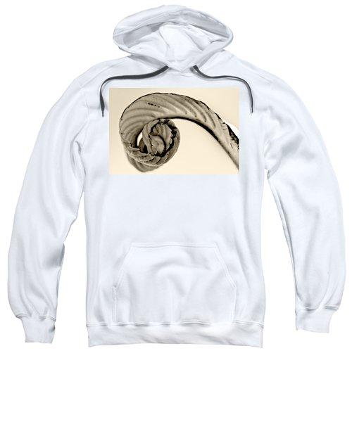 Curled Sweatshirt