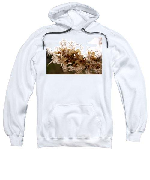 Curlleaf Mountain Mahogany Sweatshirt