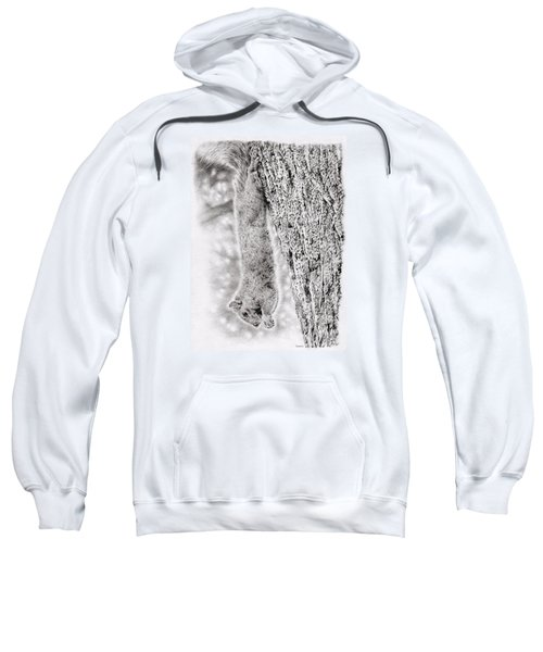 Dangling Squirrel Sweatshirt