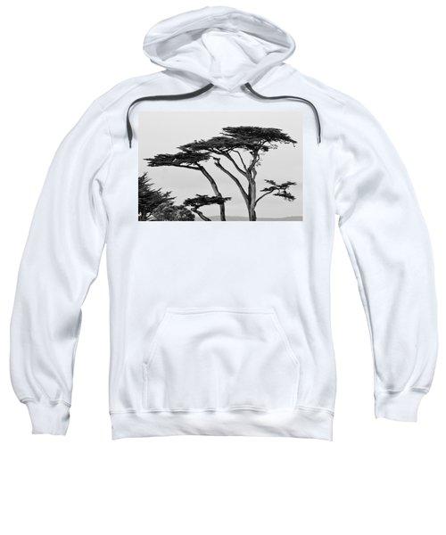 Dark Cypress Sweatshirt