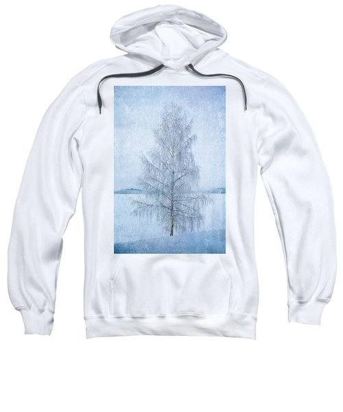 December Birch Sweatshirt
