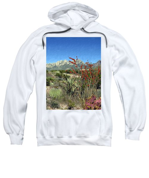Desert Bloom Sweatshirt