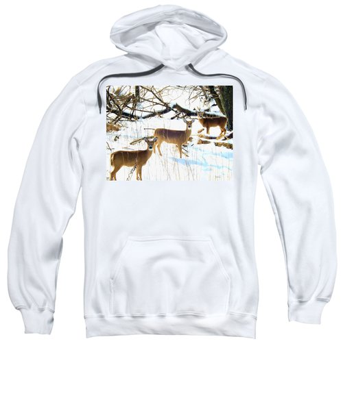 Does In The Snow Sweatshirt
