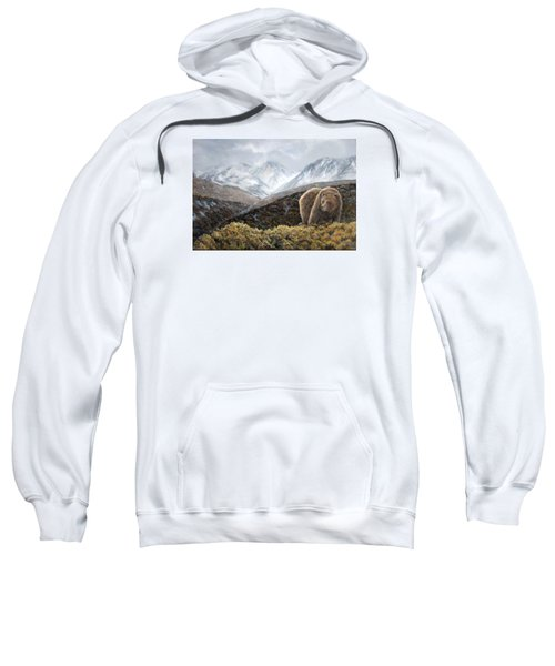 Driven To Rest Sweatshirt