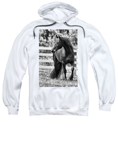 Ebony Beauty Sweatshirt
