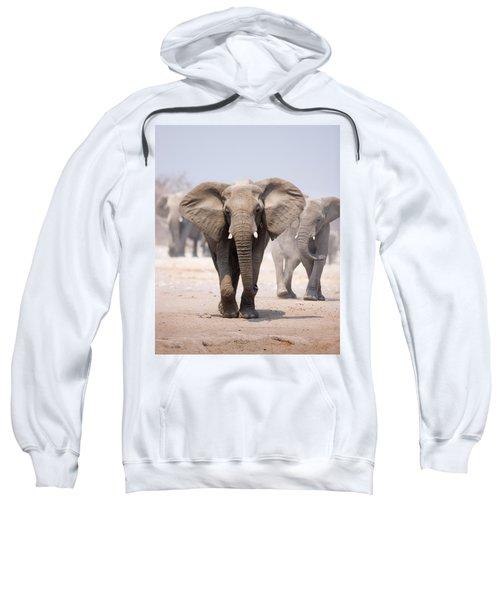 Elephant Bathing Sweatshirt