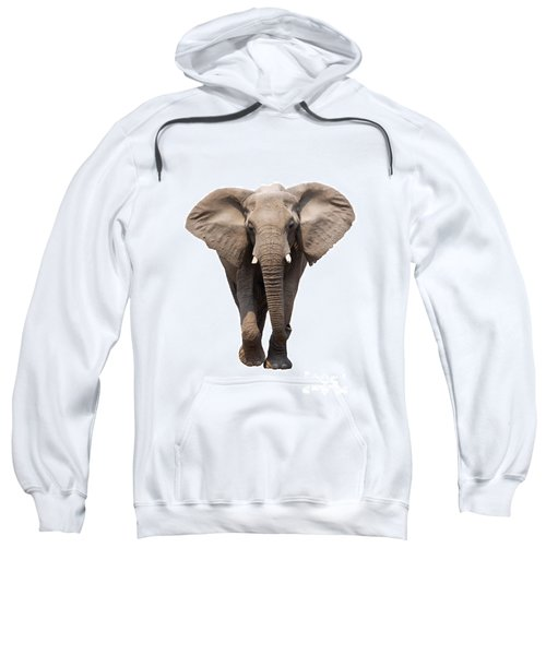 Elephant Isolated Sweatshirt