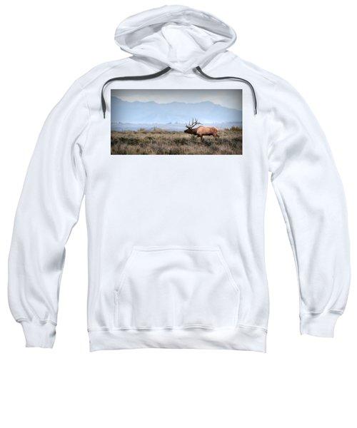 Elk Crossing Sweatshirt
