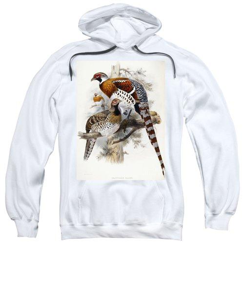 Elliot's Pheasant Sweatshirt by Joseph Wolf