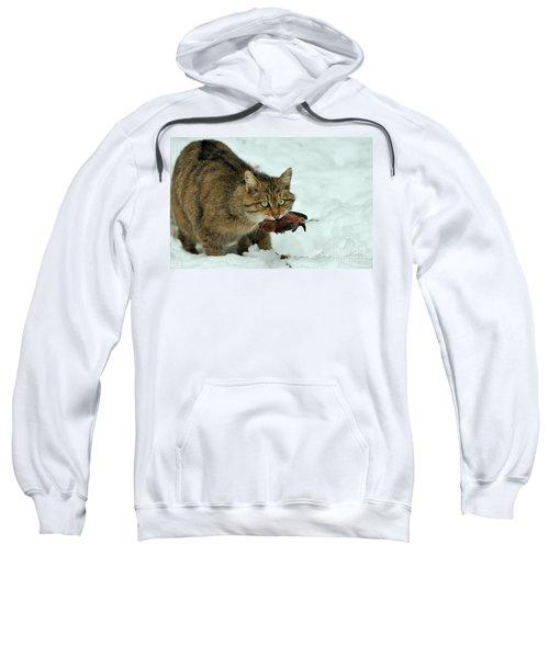 European Wildcat Sweatshirt