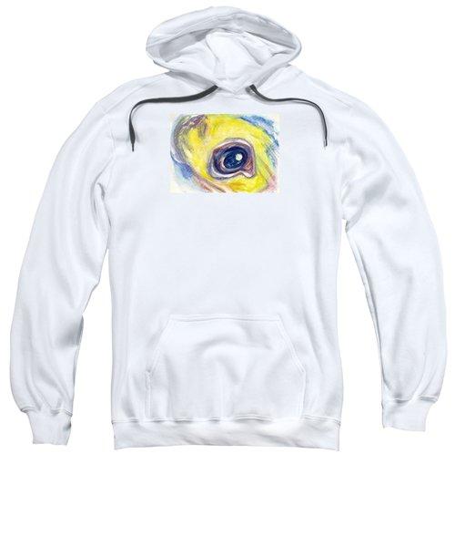 Eye Of Pelican Sweatshirt