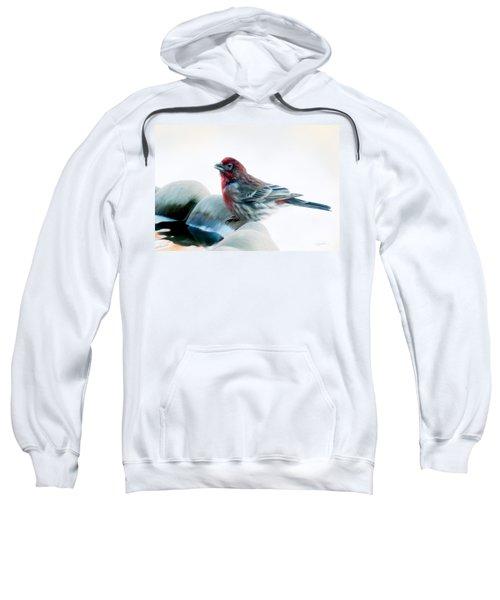 Finch Sweatshirt