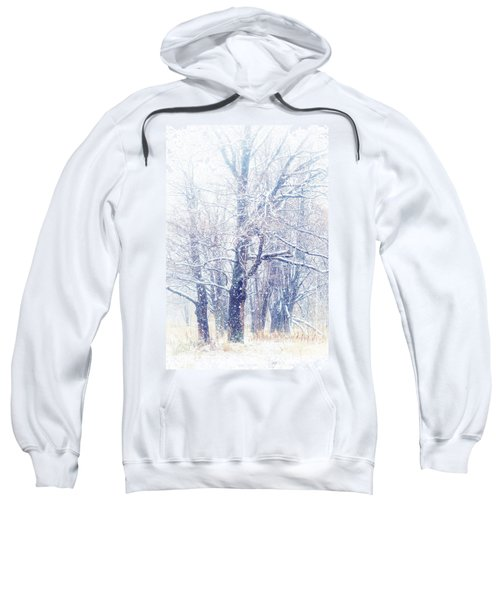 First Snow. Dreamy Wonderland Sweatshirt