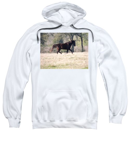 Sweatshirt featuring the photograph Flowing Beauty by Kim Pate