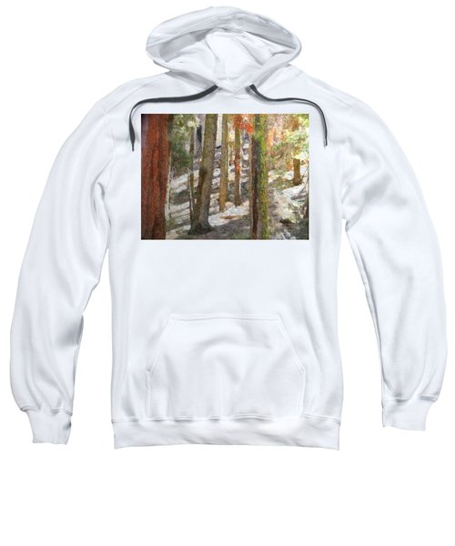 Forest For The Trees Sweatshirt