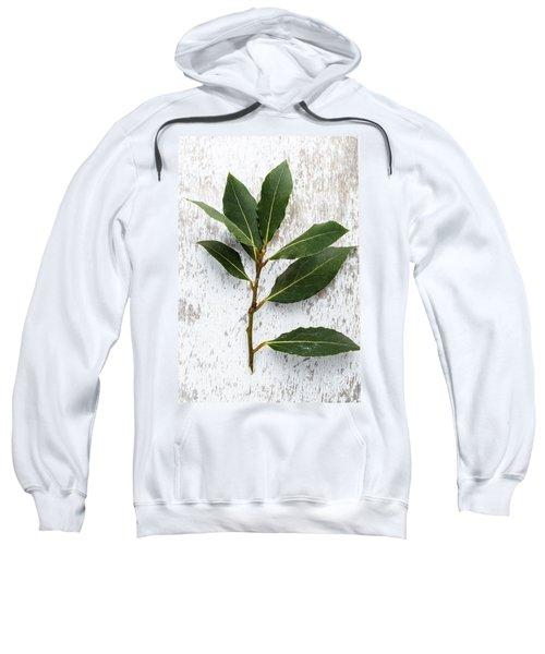 Fresh Laurel Sweatshirt