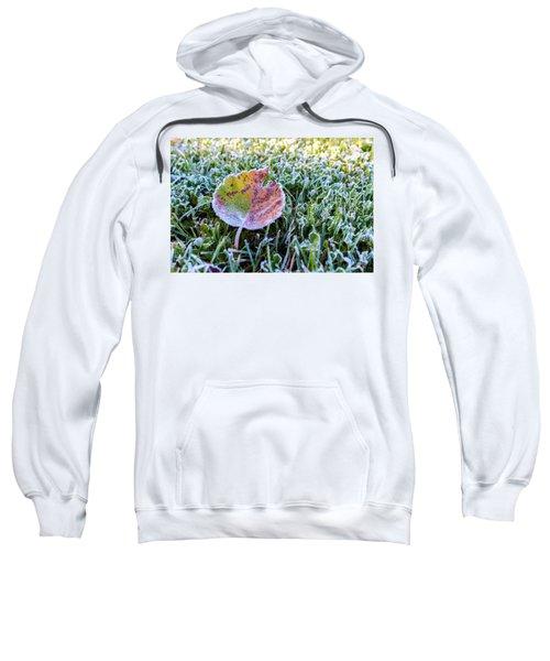 Frostbite Sweatshirt