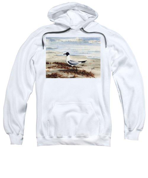 Galveston Gull Sweatshirt