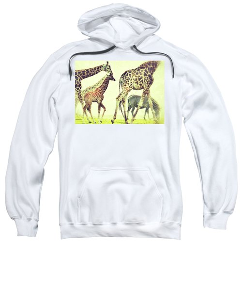 Giraffes And A Zebra In The Mist Sweatshirt