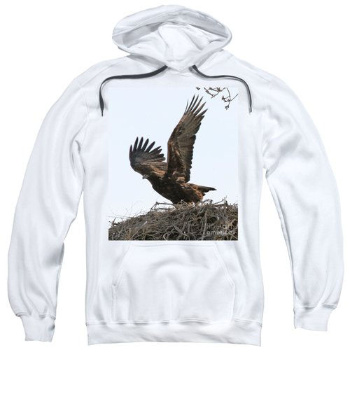 Golden Eagle Takes Off Sweatshirt
