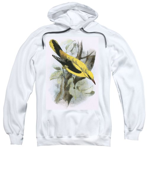 Golden Oriole Sweatshirt