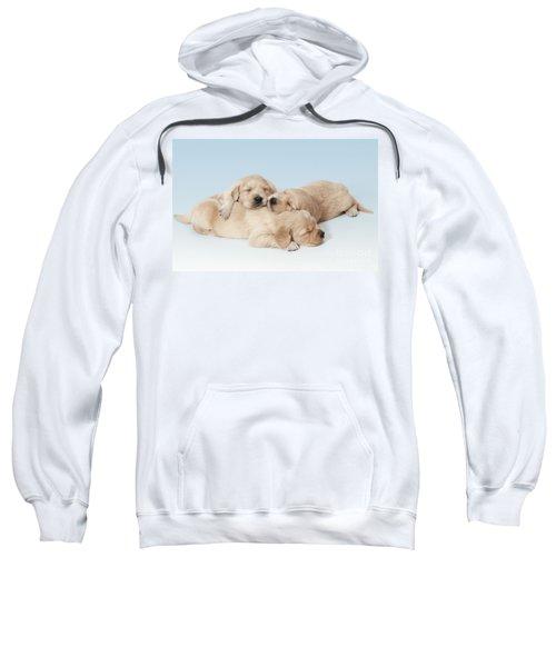 Golden Retriever Puppies Asleep Sweatshirt