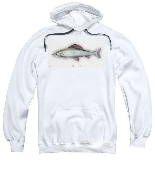 Grayling - Thymallus Thymallus - Ombre Commun - Harjus - Flyfishing - Trout Waters - Trout Creek Sweatshirt