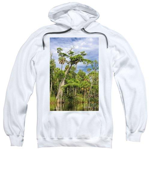 Hatrack Cypress Sweatshirt