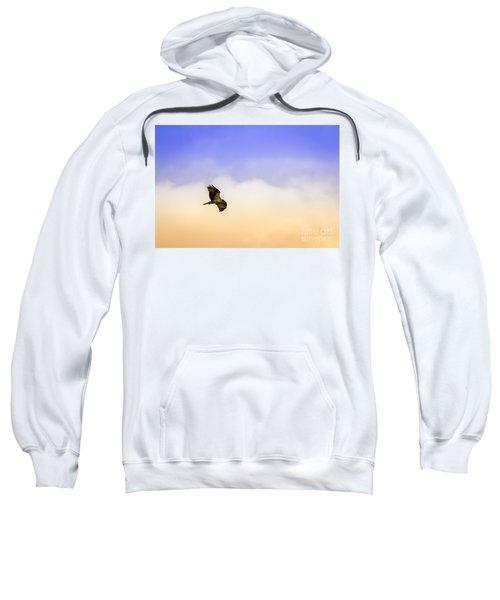 Hawk Over Head Sweatshirt