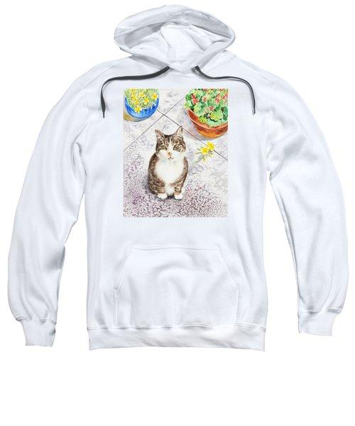 Here Kitty Kitty Kitty Sweatshirt by Irina Sztukowski