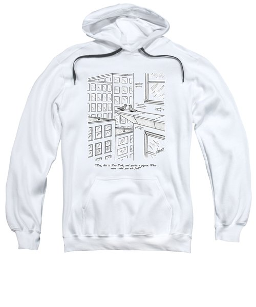 Hey, This Is New York, And You're A Pigeon.  What Sweatshirt