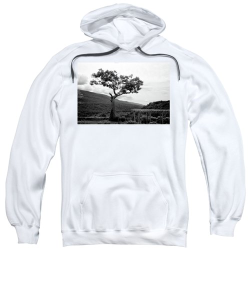 Hildene Tree 5689 Sweatshirt