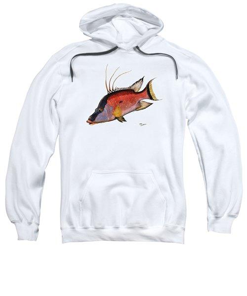 Hogfish On White Sweatshirt