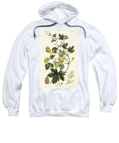 Hop Vine From The Young Landsman Sweatshirt