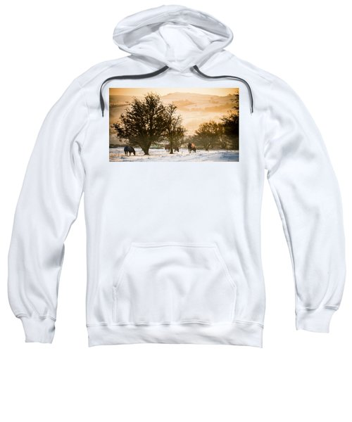 Horses In The Snow Sweatshirt