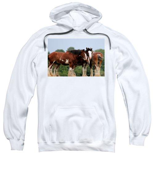 Horsie Huddle Sweatshirt