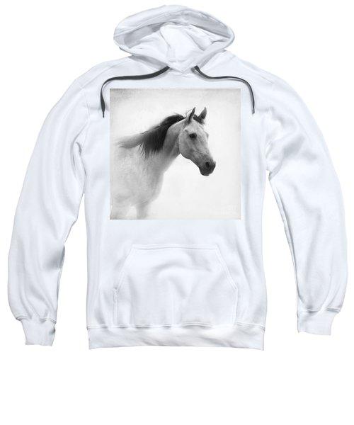 I Dream Of Horses Sweatshirt