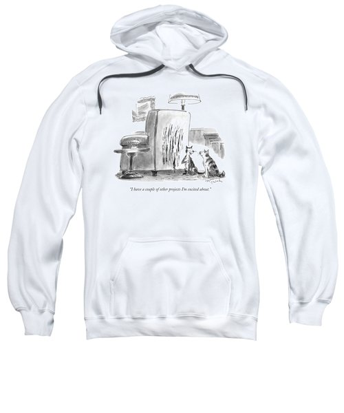 I Have A Couple Of Other Projects I'm Excited Sweatshirt