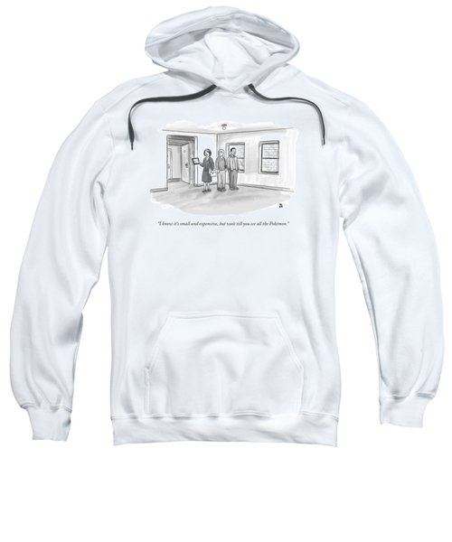 I Know It's Small And Expensive Sweatshirt