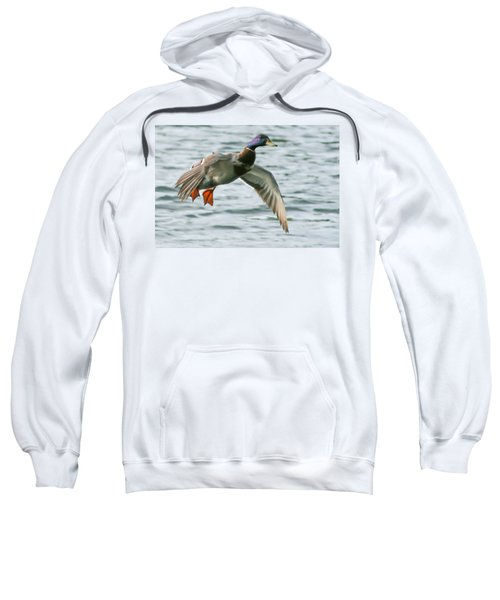 In For A Landing Sweatshirt