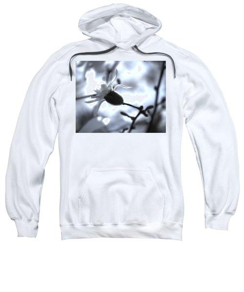 Jasmine Blossom Sweatshirt