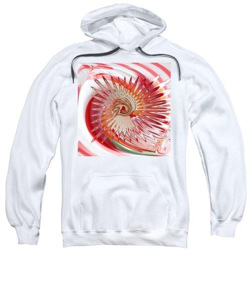 Jelly Bean Swirl Abstract Sweatshirt