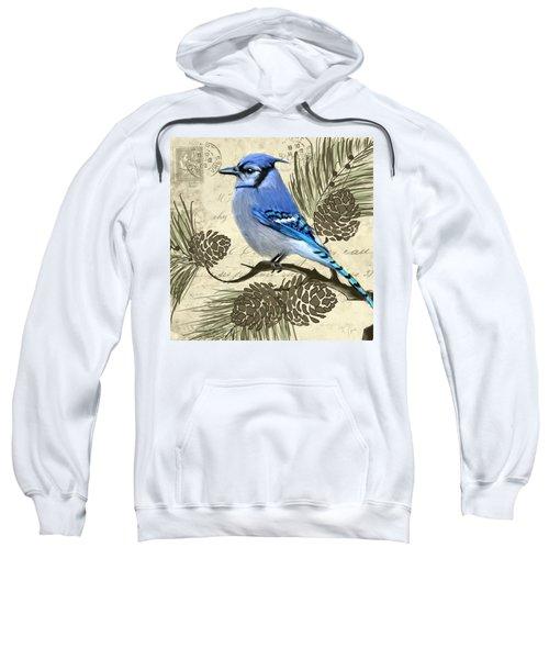 Jeweled Blue Sweatshirt