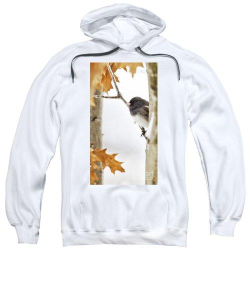 Junco And Oak Sweatshirt