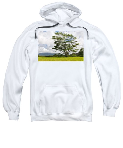Kauai Umbrella Tree Sweatshirt