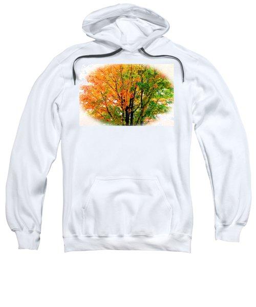 Leaves Changing Colors Sweatshirt