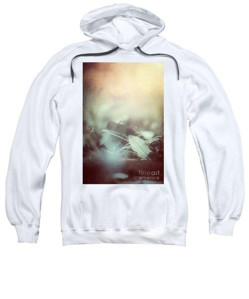 Leaves Of Time  Sweatshirt
