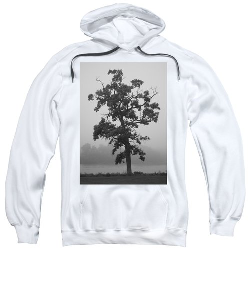 Lone Oak Sweatshirt