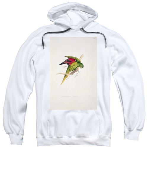 Matons Parakeet Sweatshirt by Edward Lear