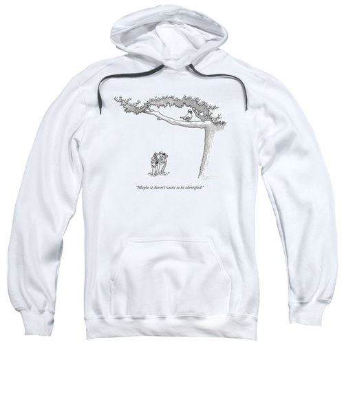 Maybe It Doesn't Want To Be Identified Sweatshirt
